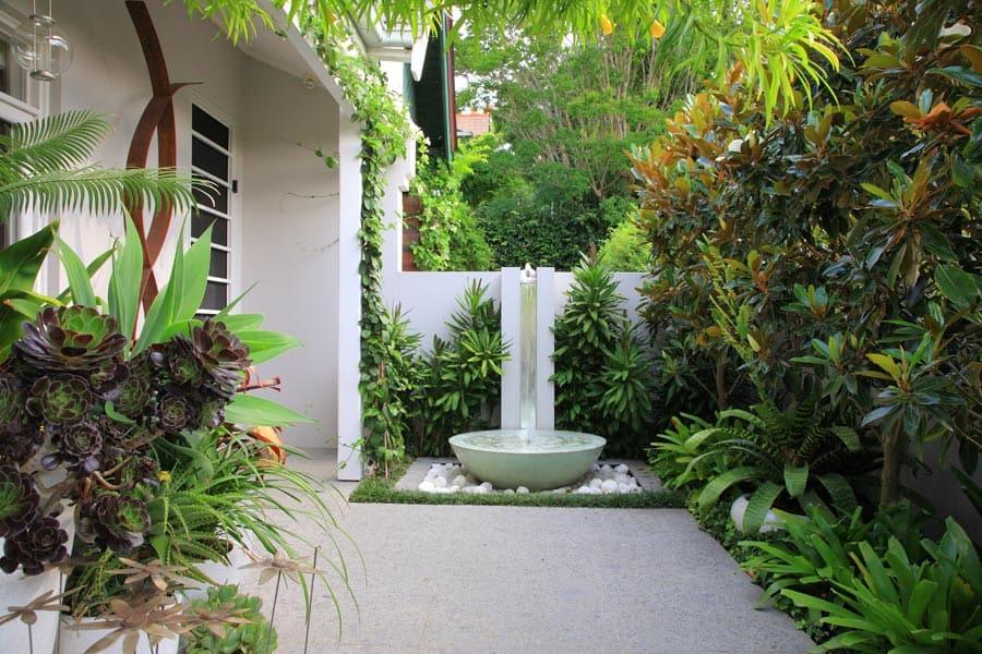 modern courtyard garden in randwick
